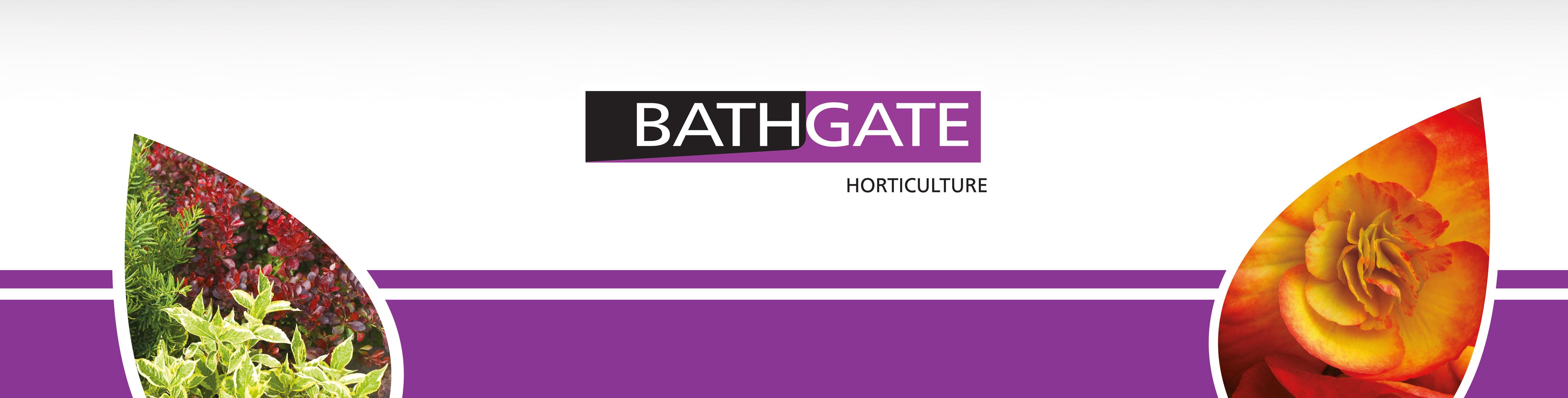 Bathgate Branding
